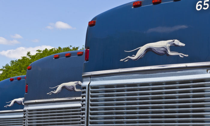 Show and Go: Greyhound upgrades travel with e-ticketing